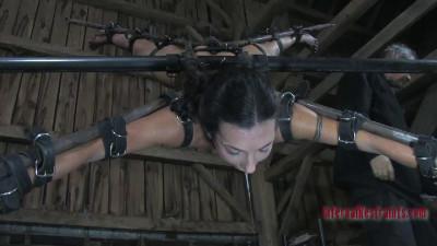 Infernalrestraints – Apr 10, 2014 – Bitch in a Box