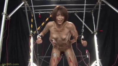 Shock! Muscle Beauty