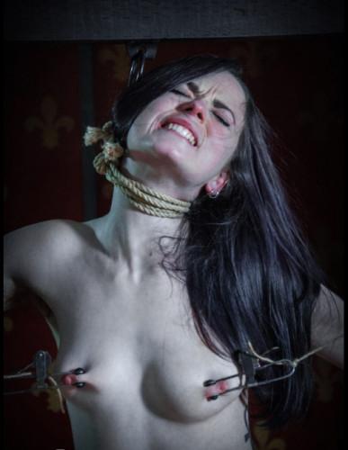 Jack Hammer Interrogates Ivy Addams In Rope Bondage