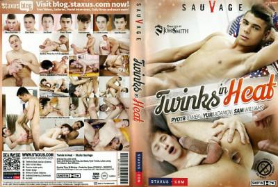 Description Twinks in Heat
