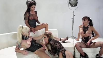 Aubrey, Domino, Venus & Jessica Drake
