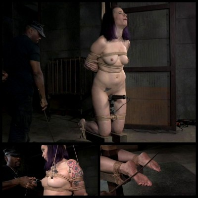 Bondage Kitty (15 Apr 2015) Hardtied