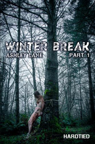Winter Break Part 1 , Ashley Lane ,HD 720p