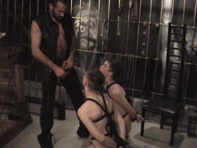 A three-way with Master Tyger and two twinks tied up perfectly