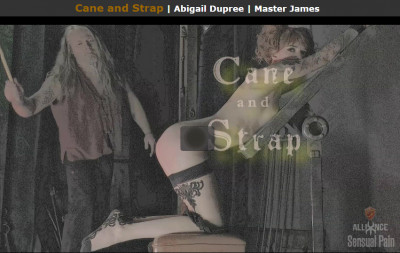 Mar 30, 2017 - Cane and Strap - Abigail Dupree, Master James