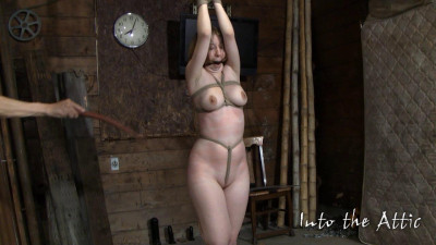 Into The Attic Full Mega Unreal Wonderfull Sweet Vip Collection. Part 9.
