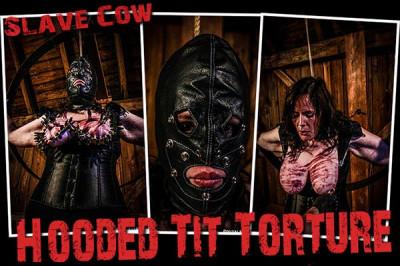 BM - Cow - Hooded Tit Torture