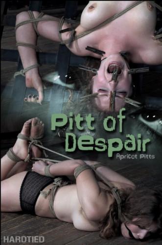 HdT Pitt of Despair — Apricot Pitts
