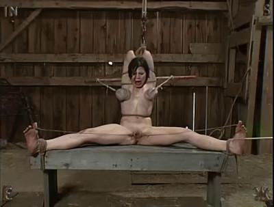 Insex - Kunt Log Pt 2 (Piglet)
