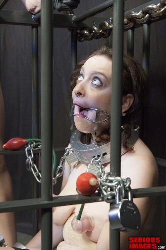 SI - Dixon Miranda Suspended Cage