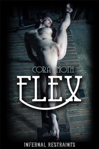 IR Flex  – Cora Moth (2019)