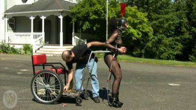 Houseofgord - Pony Carting HD 2015