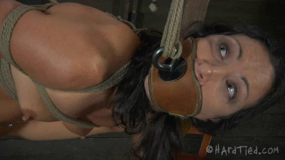 Bondage, spanking and torture for naked bitch part 2