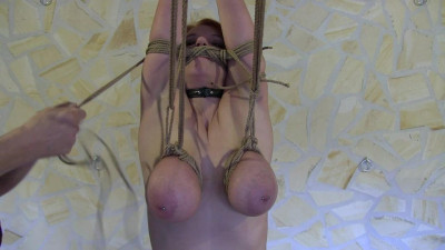 Torture For Breastslave Bettine