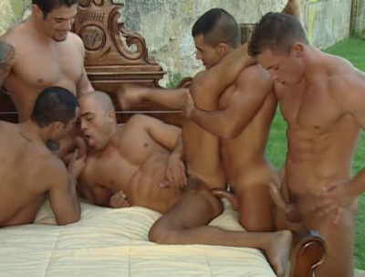 Best orgies with red-hot studs