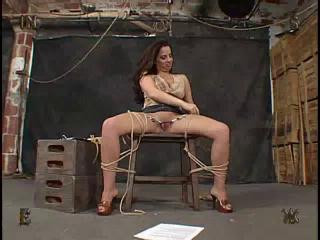 Insex Test 81
