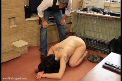 Trays slave