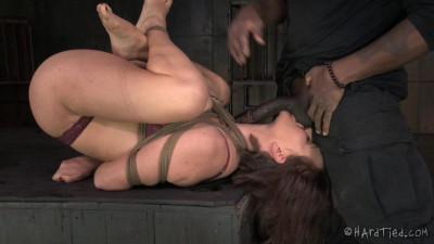 Bossy Bitch. Krissy Lynn