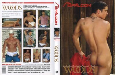 Description Through The Woods