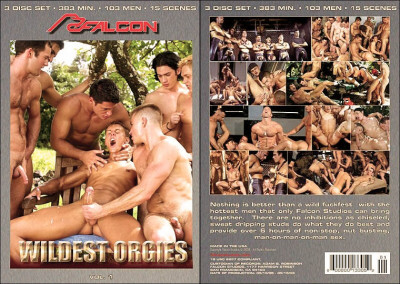 Wildest Orgies 1 CD3