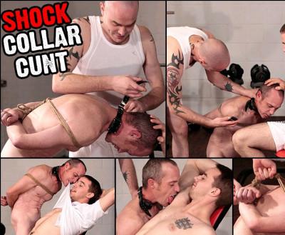 16 Shock Collar Cunt