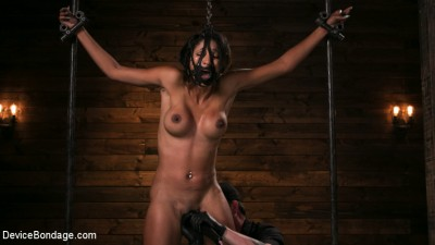 Fresh Meat - Sadie Santana