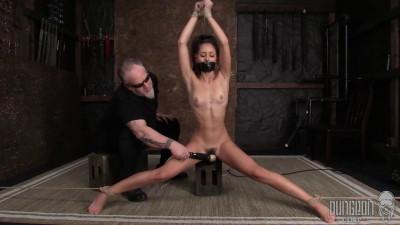 HD Bdsm Sex Videos Best SocietySM part 24