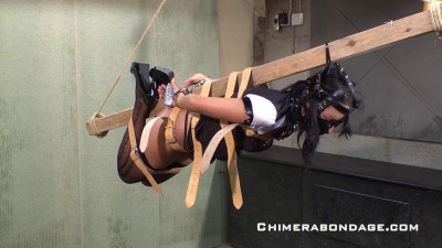 Chimera Bondage Video Collection 3
