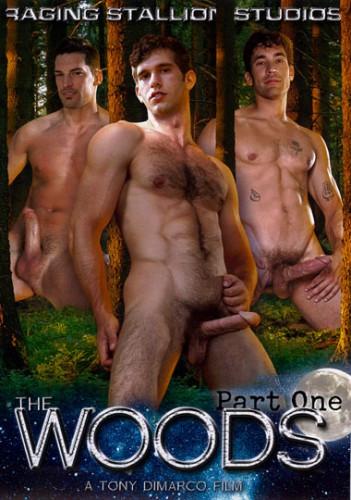 Description The Woods, Part One