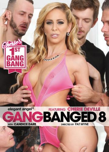 Description Gangbanged vol 8(2017)
