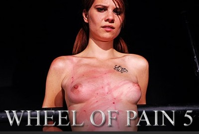 Wheel of Pain 5 (2014)