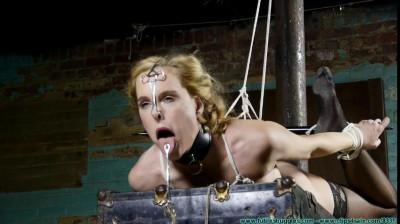 Ariel Anderssen - Slave Position Training For Ariel Anderssen