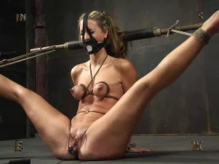 Insex – Maintrain – Mainpain's Training