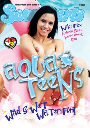 Description Aqua Teens
