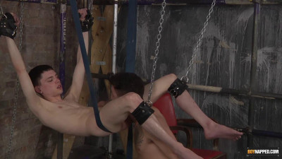 Hung and excited