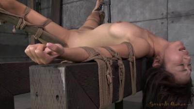 SexuallyBroken – June 20, 2014 – Marica Hase – Jack Hammer