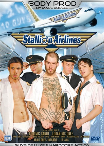 Description Stallion Airlines
