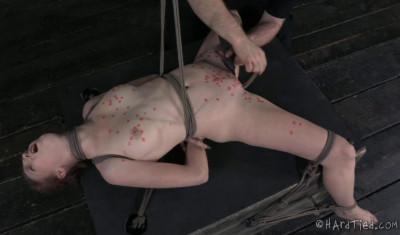 Ashley Lane Enjoys Airtight Bondage