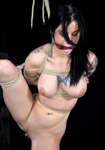 Erotic BDSM Signals