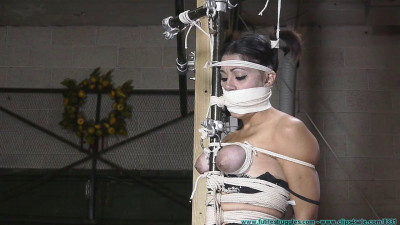 HD Bdsm Sex Videos Sahryes Performance Suffers So She must Part 3