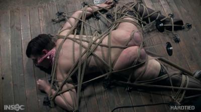 Hot Slave Kitty Dorian Gets Rough Bondage