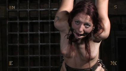 Insex - At the Farm Part 1