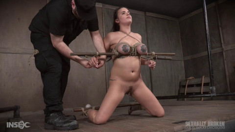 Greedy cock slut Scarlet De Sade is rough fucked  20.11.2017