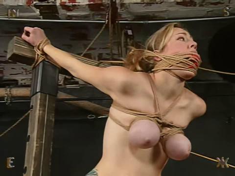 Insex - Sevens Training (Seven)