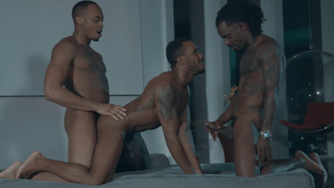 NM - Gay Porn Video Set !
