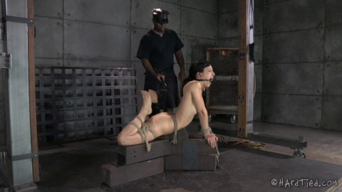 HT - A Bondage Therapy, Part One - Elise Graves, Jack Hammer