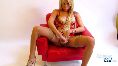 Stockings and Garter