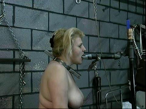 Len whips her tits, releases the rope grip, and feeds her a cat