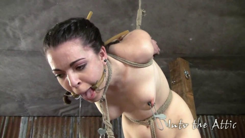 Super tying, punishment and strappado for nice-looking brunette hair