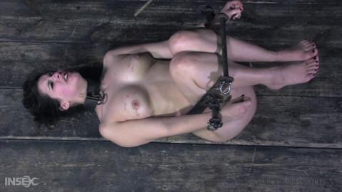 Punished Cunt